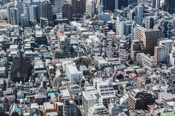 Big city in Japan top view with many buildings and streets. Architecture and business background