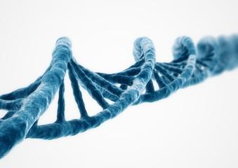 3D Rendering DNA strand