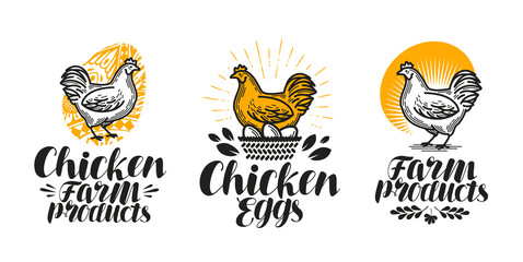 Chicken, hen label set. Poultry farm, egg, meat, broiler, pullet icon or logo. Handwritten lettering vector illustration