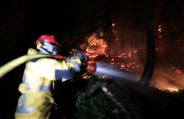A firefighter sprays water to extinguish a forest fire in Castagniers near Nice