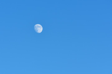 Beautiful moon in a blue evening sky without clouds