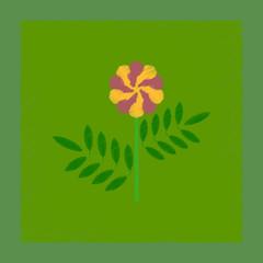 flat shading style illustration plant tagetes