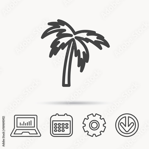 Palm Tree Icon Travel Or Vacation Symbol Nature Environment Sign