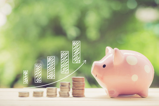 Money coins stack growing graph and piggy bank nature background, business concept.