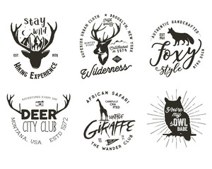 Wild animal badges set. Included giraffe, owl, fox and deer shapes. Stock isolated on white background