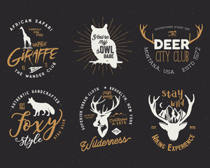 Wild animal badges set. Included giraffe, owl, fox and deer shapes. Stock isolated on dark background