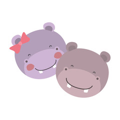 colorful caricature faces of hippo couple animal happiness expression vector illustration