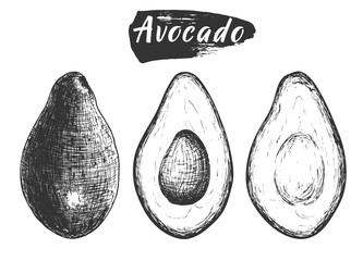 Sketch ink vintage avocado set, full fruit an cuts illustration, draft silhouette drawing, black isolated on white background. Food graphic etching design.