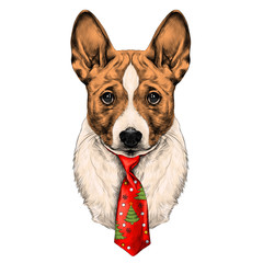 the dog breed Basenji head with a Christmas tie sketch vector graphics color picture