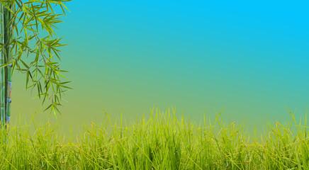 bordure d'herbe et de bambou, fond bleu
