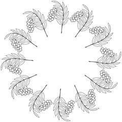 sketch rowan, liner, round frame 1