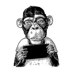 Monkeys holding table. Vintage black engraving illustration for poster
