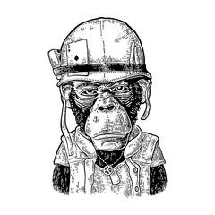Monkey in soldier helmet with glasses. Vintage black engraving