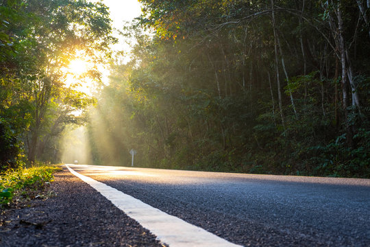 Outback or upcountry road in the morning with golden sunlight