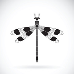 Vector of a dragonflies (Orolestes octomaculatus)  on white background. Insect Animal
