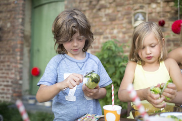 Children Helping To Prepare Vegetables For Outdoor Meal