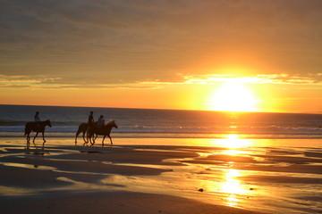 Chevaux sur la plage et couché de soleil