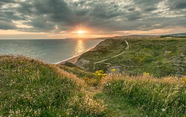 Shepherd's Chine, Isle of Wight