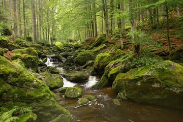Waterfall in Bayerischer Wald Nationalpark