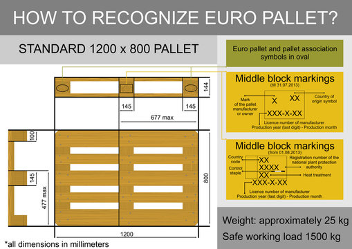 Plan view with dimensions of a euro pallet. Flat vector.