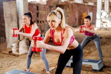 Pretty fitness girls exercising step aerobics outside the gym with dumbbells.