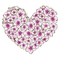 Heart of pink and violet phlox flowers isolated on white background. Vector illustration.