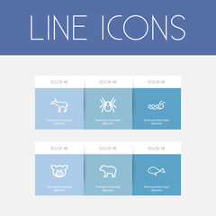Set Of 6 Editable Animal Outline Icons. Includes Symbols Such As Cachalot, Spinner, Antelope And More. Can Be Used For Web, Mobile, UI And Infographic Design.