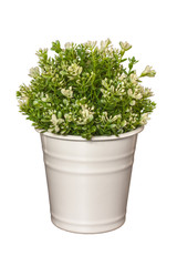 Artificial plant in a white pot