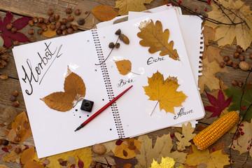 Herbst Poesie