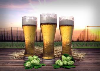 three glasses of beer with hop-garden background - 3D render