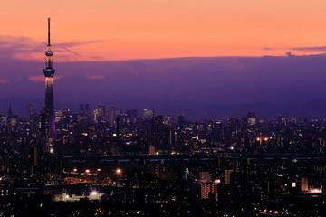 Poster Tokio Tokyo night view