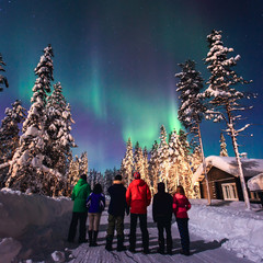 Garden Poster Scandinavia Beautiful picture of massive multicoloured green vibrant Aurora Borealis, Aurora Polaris, also know as Northern Lights in the night sky over winter Lapland, Norway, Scandinavia