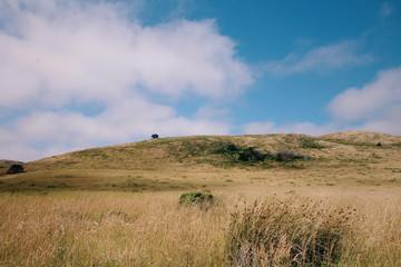 Beautiful landscape with blue sky
