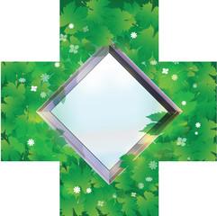 34.Mirror frame on leaves