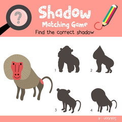 Shadow matching game of Baboon animals for preschool kids activity worksheet colorful version. Vector Illustration.