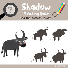 Shadow matching game of Buffalo animals for preschool kids activity worksheet colorful version. Vector Illustration.