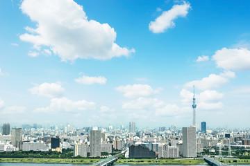 Fotomurales - 東京の風景