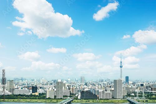 Wall mural 東京の風景