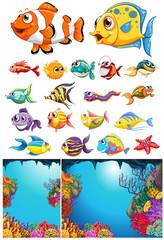 Ocean scene and many sea animals