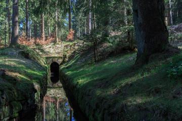 Oberharzer Wasserregal - Huttaler Graben