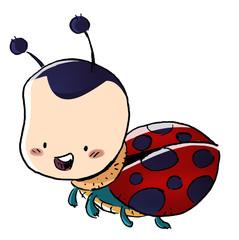 mariquita insecto ilustracion