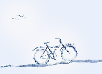 Water Bicycle and Birds