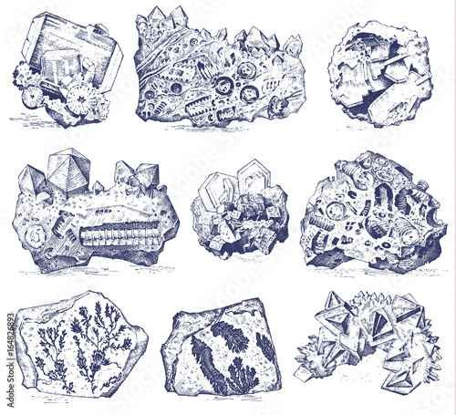 Fossilized plants, stones and minerals, crystals