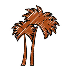 tree palms isolated icon vector illustration design