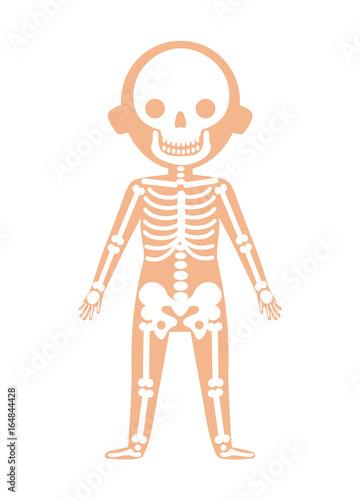 Boy Body Anatomy With Skeleton System Health Medical Icon Internal