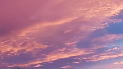 Papiers peints Rose banbon ciel d'été