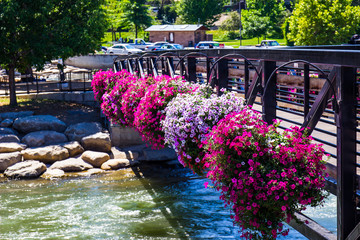 Colorful Flowers On Walking Bridge Over Truckee River