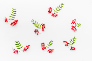Berry ornament. Red currant and leaves on white background top view