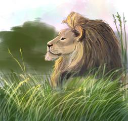 Digital drawing. Illustration of lion.