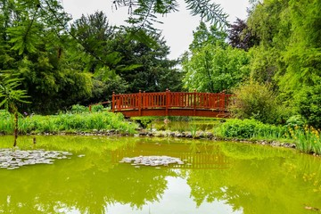 Oasis with bridge in the Botanical garden in Zagreb, Croatia